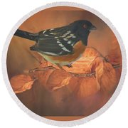 Spotted Towhee In Autumn Round Beach Towel by Janette Boyd