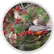 Easy Pickings Robin Round Beach Towel
