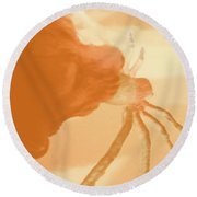 Eating Spiders II Round Beach Towel