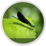 Round Beach Towel featuring the photograph Ebony Jewelwing by Ricky L Jones