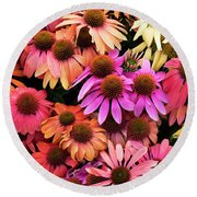 Echinacea Colour Round Beach Towel