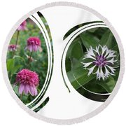 Echinacea Pink 'razzamatazz' And  Centaurea Montana Amethyst In Circle Swirls Round Beach Towel