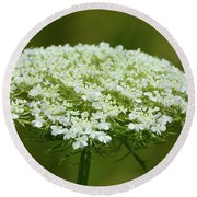 Edge Of Queen Anne's Lace Round Beach Towel