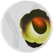 Egg Art - Shadow Dish Round Beach Towel