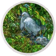 Egret And Chicks Round Beach Towel