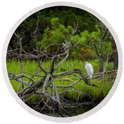 Egret At Pine Knoll 2 Round Beach Towel