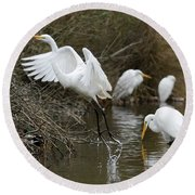 Round Beach Towel featuring the photograph Egret Exit by George Randy Bass
