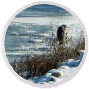 Egret Frozen Lake Round Beach Towel
