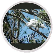 Egret In Rookery Round Beach Towel