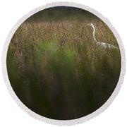 Egret In Swamp-2-0711 Round Beach Towel