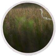 Egret In Swamp-3-0711 Round Beach Towel