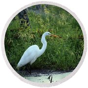 Egret In The Early Morning Round Beach Towel