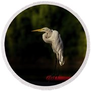 Round Beach Towel featuring the photograph Egret On Deck Rail by Robert Frederick