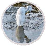 Egret Standing In A Stream Preening Round Beach Towel