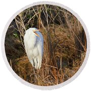 Egret With Something To Say Round Beach Towel