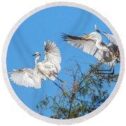 Egrets 4460-090314-2cr Gwr Round Beach Towel