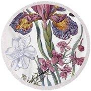 Eighteenth Century Engraving Of Flowers Round Beach Towel