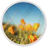 El Paso Poppies Round Beach Towel