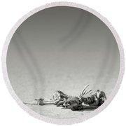 Eland Skeleton In Desert Round Beach Towel