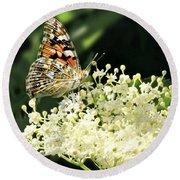 Elderflower And Butterfly Round Beach Towel