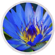 Electric Lily Round Beach Towel