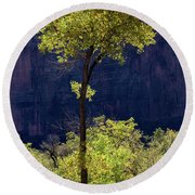 Elegance In The Park Utah Adventure Landscape Photography By Kaylyn Franks Round Beach Towel