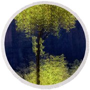 Elegance In The Park Vertical Adventure Photography By Kaylyn Franks Round Beach Towel