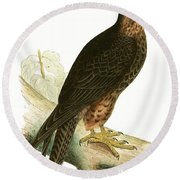 Eleonora Falcon Round Beach Towel by English School