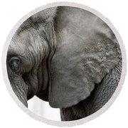 Elephant 2 Round Beach Towel