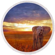 Elephant Baby Round Beach Towel
