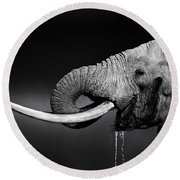 Elephant Bull Drinking Water Round Beach Towel