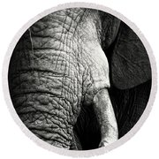 Elephant Close-up Portrait Round Beach Towel