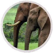 Elephant Couple Profile Round Beach Towel
