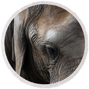 Round Beach Towel featuring the photograph Elephant Eye by Lorraine Devon Wilke