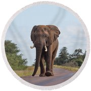 Elephant In Kruger Round Beach Towel