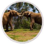 Elephant Play 3 Round Beach Towel