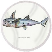 Elephant Shark Round Beach Towel