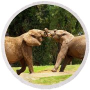 Elephants At Play 2 Round Beach Towel