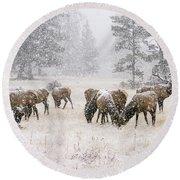 Elk In A Snow Storm - 1135 Round Beach Towel