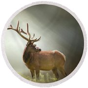 Round Beach Towel featuring the photograph Elk In Suns Rays by David and Carol Kelly