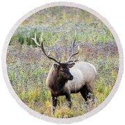 Elk In Wildflowers #1 Round Beach Towel