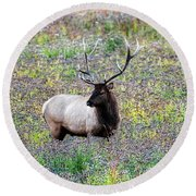 Elk In Wildflowers #2 Round Beach Towel