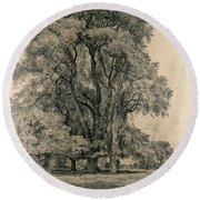 Elm Trees In Old Hall Park Round Beach Towel