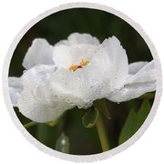 Embracing The Rain - White Tree Peony Round Beach Towel by Gill Billington