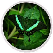 Emerald Swallowtail Round Beach Towel by Sandy Keeton