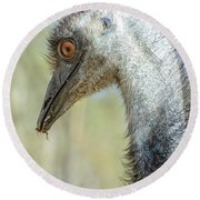 Emu 3 Round Beach Towel