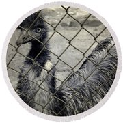 Emu At The Zoo Round Beach Towel