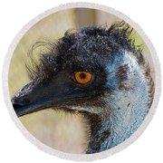 Emu Round Beach Towel by Kenneth Albin