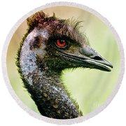 Emu Love Round Beach Towel by Michael Cinnamond