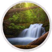 Round Beach Towel featuring the photograph Enchanted Forest by Darren White